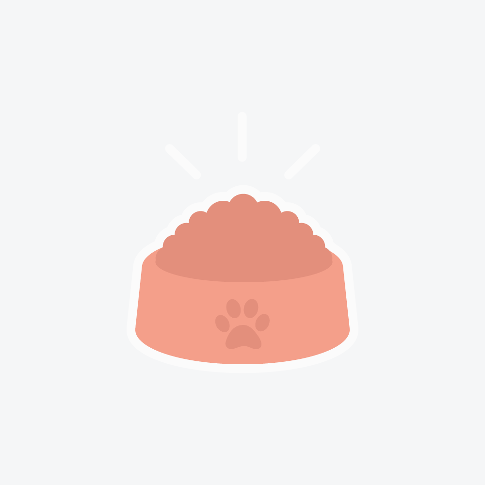 Pet Care Job 's Profile Picture