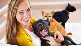services_pet_care